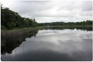 Image of Lake Macy from the extended dock.